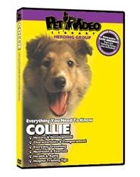 Collie Video
