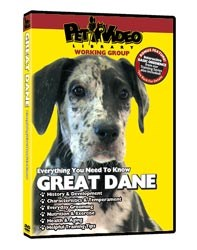Great Dane Video