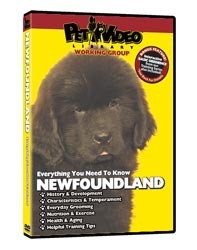Newfoundland Video