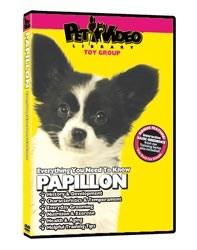 Papillon Video