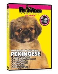 Pekingese Video