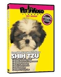 Shih Tzu Video