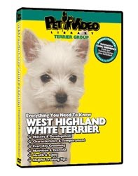 West Highland Terrier Video