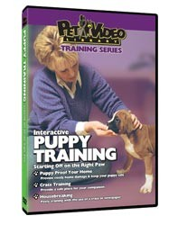 Puppy Training Video