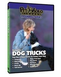 Dog Tricks Video