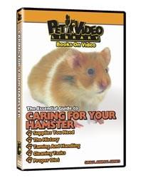 Hamster Video