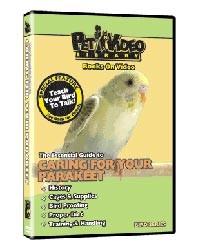 Parakeet Video