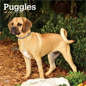 Puggle Calendar 2015