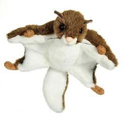 Flying Squirrel Plush