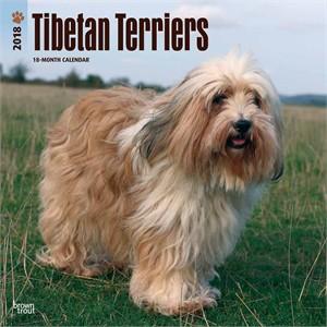 Tibetan Terrier Calendar 2015