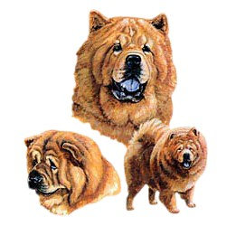 Chow Chow T-Shirt - Best Friends