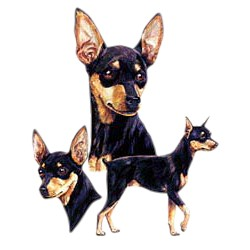 Miniature Pinscher T-Shirt - Best Friends