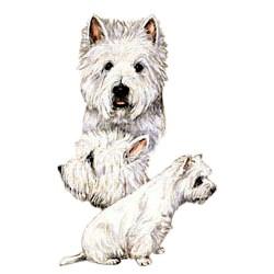 West Highland Terrier T-Shirt - Best Friends