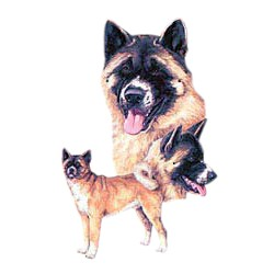 Akita T-Shirt - Best Friends