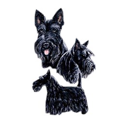 Scottish Terrier T-Shirt - Best Friends
