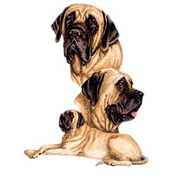 Mastiff T-Shirt - Best Friends