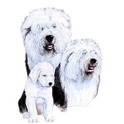 Old English Sheepdog T-Shirt - Best Friends