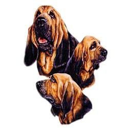 Bloodhound T-Shirt - Best Friends