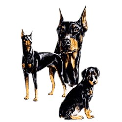 Doberman Pinscher T-Shirt - Best Friends