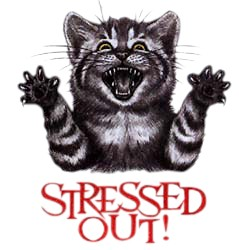 Cat T-Shirt - Stressed Out
