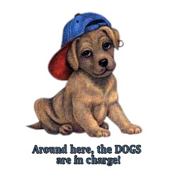 Dog T-Shirt - Dogs are in Charge