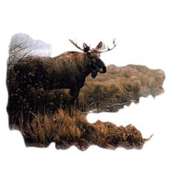 Moose T-Shirt - Gorgeously Depicted