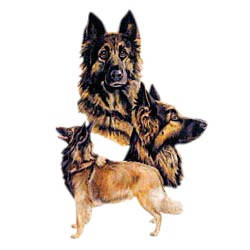 Belgian Tervuren T-Shirt - Best Friends