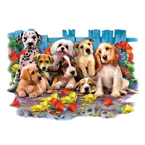 Dog T-Shirt - Colorful Cuties