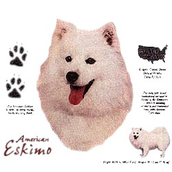 American Eskimo Dog T-Shirt - History Collection