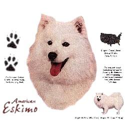 American Eskimo Dog T-Shirt - History Collection