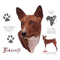 Basenji T-Shirt - History Collection
