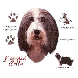 Bearded Collie T-Shirt - History Collection