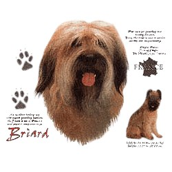 Briard T-Shirt - History Collection