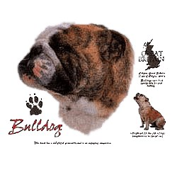 Bulldog T-Shirt - History Collection