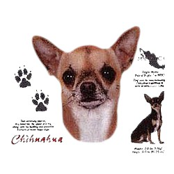 Chihuahua T-Shirt - History Collection