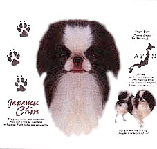 Japanese Chin T-Shirt - History Collection