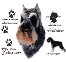 Schnauzer T-Shirt - History Collection