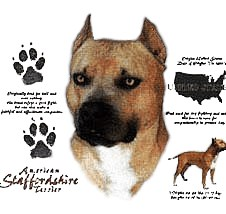 American Staffordshire Terrier T-Shirt - History Collection