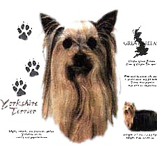 Yorkshire Terrier T-Shirt - History Collection