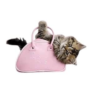 Kitten T-Shirt - With Pink Purse
