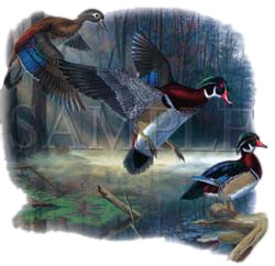 Wood Duck T-Shirt - Male and FeMale