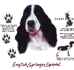 Springer Spaniel T-Shirt - History Collection