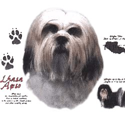 Lhasa Apso T-Shirt - History Collection