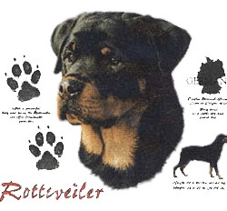 Rottweiler T-Shirt - History Collection