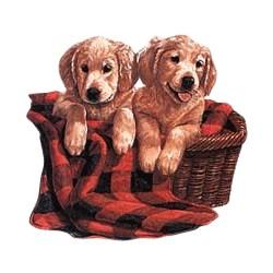 Golden Retriever T-Shirt - Puppies
