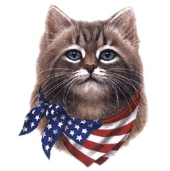 Cat T-Shirt - American Flag