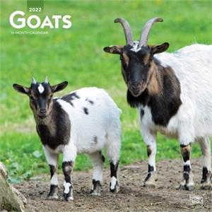 Goats Calendar 2015