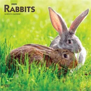 Rabbits Calendar 2015