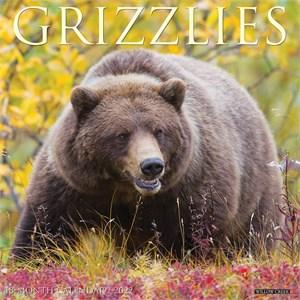 Bears Calendar 2015