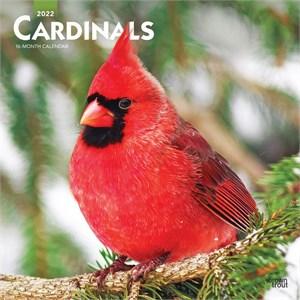 Cardinals Calendar 2015